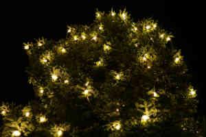 køb de gode og billige led udendørs lys til den smukke julebelysning