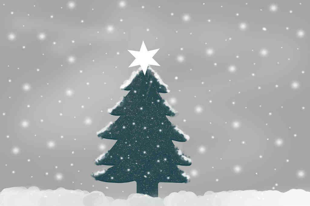 Kender du juletræets historie