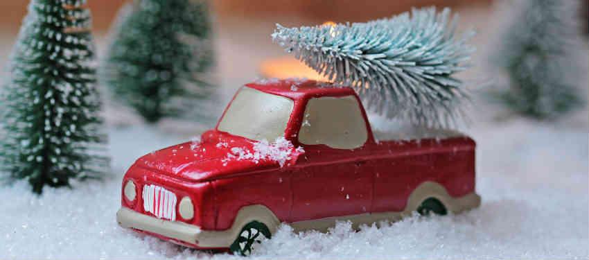 brug juletræslevering online for det hurtige køb af juletræ