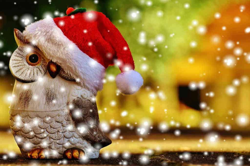 ideer til at få en hyggelig jul uden stress